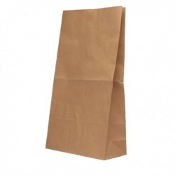 Paper Bag Brown W360xD260xH520 Pk125