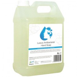 2Work Conditioning Antibacterial Handwash 5 Litre Bulk Bottle